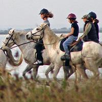 HorsebackRidingCamargue